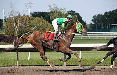 Horse Racing in New Jersey