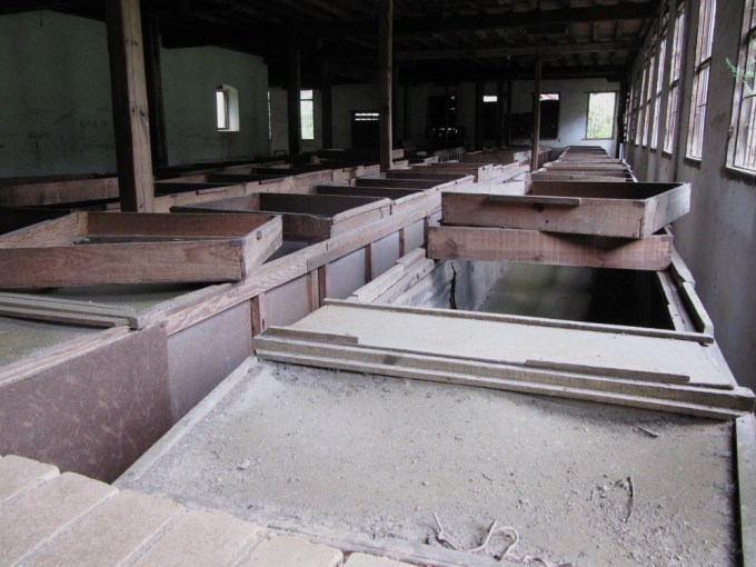 drying platforms nan nuo shan tea factory in shi tou village