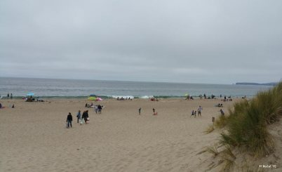 Relatively crowded beach for Limantour.