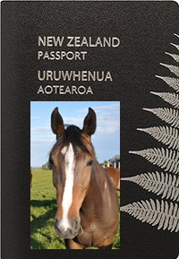 220px-NZPassport