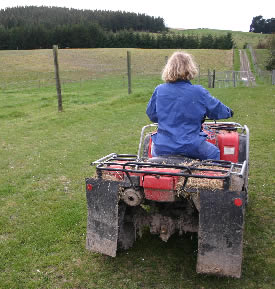Save the planet - use your legs: on your home block,leave your quad bike in the shed and walk instead.