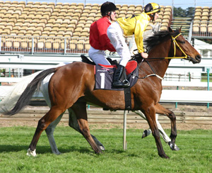 Northerly, pictured in 2004 with jockey Mark Flaherty.