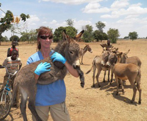 Vets found a complete lack of preventive health in donkeys in the Arusha region.