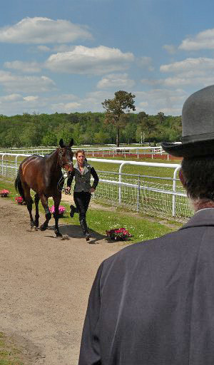 Caroline Powell and The Earl of Belvedere at the trot-up.