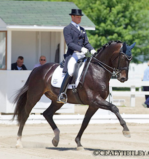 David Marcus riding Chrevi's Capital was officially nominated to the 2012 Canadian Olympic Team for dressage. Photo Credit – Cealy Tetley, www.tetleyphoto.com