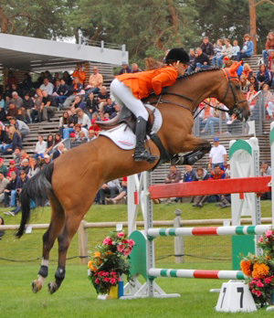 British bred pony Rock Dee Jay, ridden by Lisa Nooren of the Netherlands, won silver at the FEI European Pony Championships in France in late July.