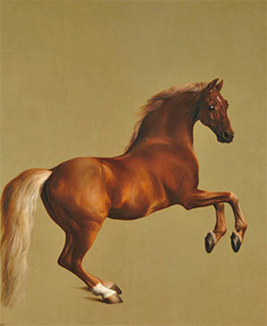 George Stubbs, Whistlejacket (c. 1762)