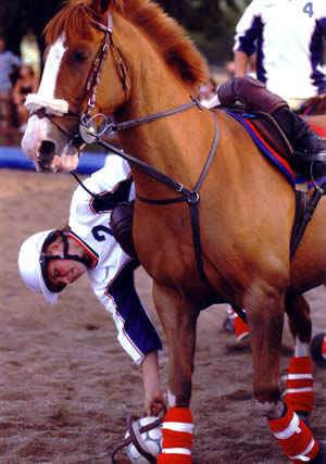 A horseball competitor in action.