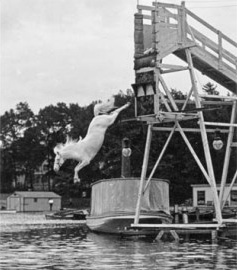 Horse diving in Atlantic City in the early part of the 20th century.