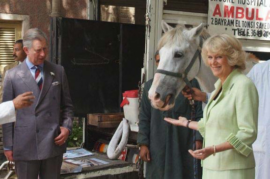 President of The Brook, Camilla, Duchess of Cornwall, with her husband Prince Charles, during a visit to The Brook in Egypt.