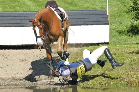 The FEI says after 2004, the rate of eventing falls began to decrease and is now flattening out.