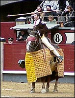 A horse is blind-folded before being used in a bullfight.
