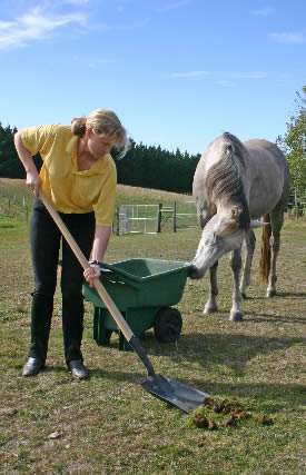 Reducing your carbon hoofprint - Features - Horsetalk co nz