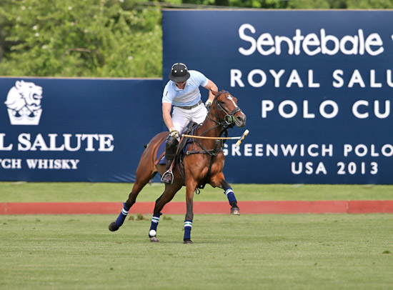 The match was the first time Prince Harry had been on a horse in about a year. He helped the team to a 4-3 win.