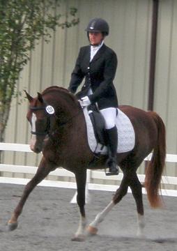 Training Level Dressage test in 2010.