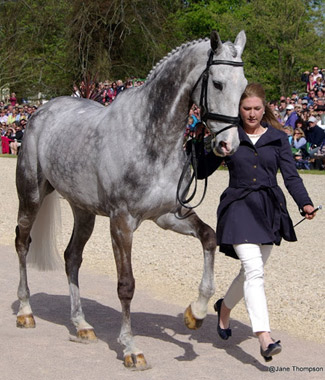 Tiana Coudrey and the lovely Ringwood Magister