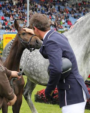 Daniel-Deusser-foal-winner