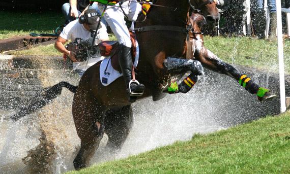 © Horsesports Photographic