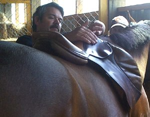 Master Saddler Andre Bubear checks a saddle fit during a clinic in New Zealand.
