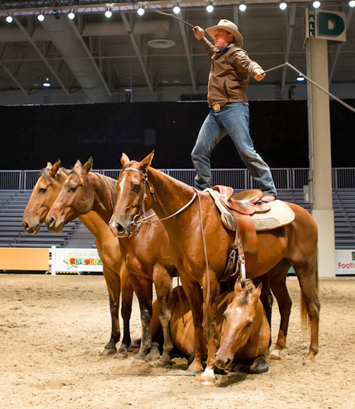 Australia's Guy McLean is performing until Sunday at the Royal Horse Show and at the President's Choice Animal Theatre.