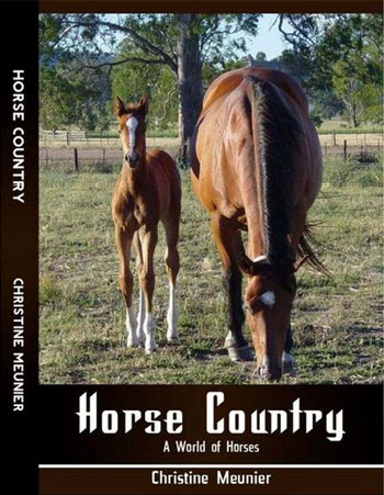 horse-country