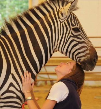 Lauren Burke with Holly the zebra at Spirit of Leadership.