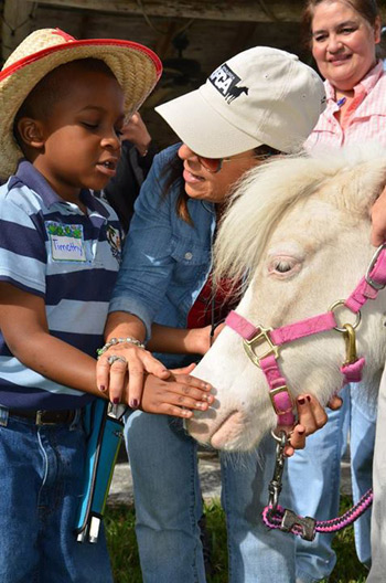 A youngster meets Jackie, a visually impaired pony at the South Florida SPCA.