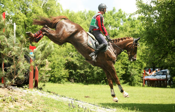 Martin Dimitrov and Whanyano won individual gold for the host nation at the FEI Balkan Eventing Championship 2014 at Shumen in Bulgaria last weekend.