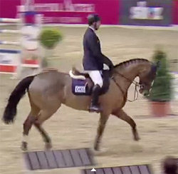 Fine Lady 5 and Holger Wulschner.