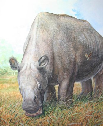 """Scientists at the University of York provided the key to solving the evolutionary puzzle surrounding what Charles Darwin called the """"strangest animals ever discovered"""". Pictured is Toxodon platensis. Illustration: Peter Schouten from the forthcoming book """"Biggest, Fiercest, Strangest""""/W. Norton Publishers"""