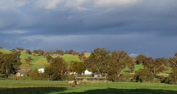 The Australian College of Equine Podiotherapy campus at Mayfield Barehoof Centre in Yarck.