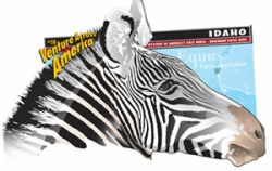U-Haul's graphic: The Hagerman Horse grazed Idaho's ancient savanna over three million years ago. Fossils indicate this zebra-like species continued to evolve until 10,000 years ago, when all traces of the creatures suddenly vanished.