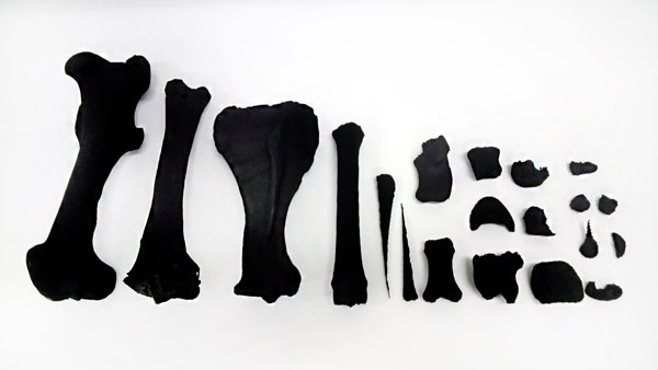 The replica nylon bone parts that were articulated to create the new hind leg.