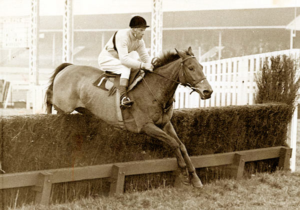 Arkle in action.