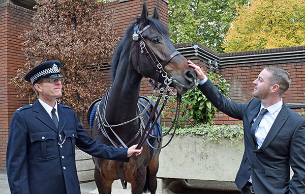 David Wilson, Quixote and PC Andrew Hill (who was riding alongside Alistair and Quixote on another horse).