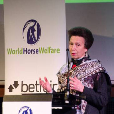 Princess Anne said horse owners needed to maintain a long-term interest in their horse's health and welfare. Photo: World Horse Welfare