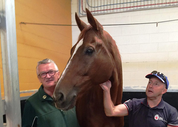 Red Cadeaux will live out his days at the Living Legends racehorse retirement home.