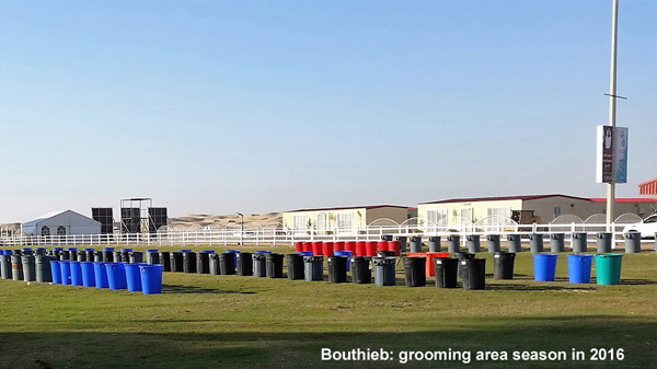 A much more orderly grooming area at Bouthieb in 2016.