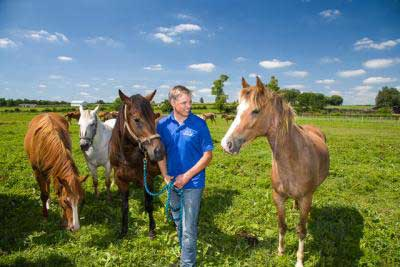 Dr Martin Nielsen with horses at the University of Kentucky's Maine Chance farm. Photo: Steve Patton, University of Kentucky