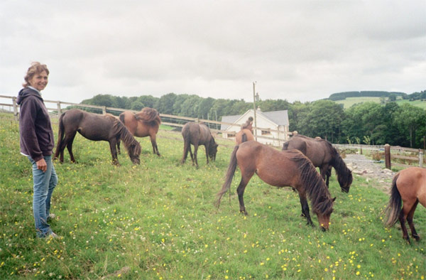Sheilagh Brown with her Skyrian horses.