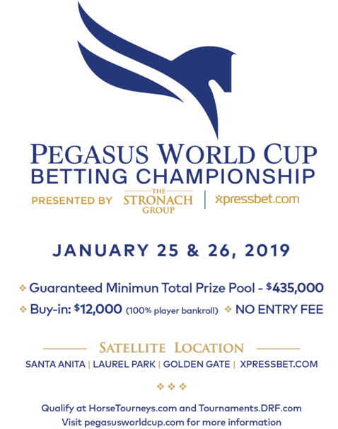 A Look Forward To The Pegasus World Cup Betting