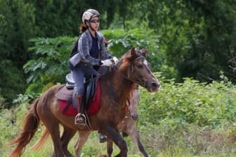 Horse-Riding-Thailand