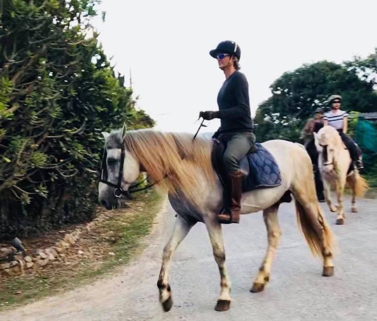 Horse Riding Thailand Khao Yai