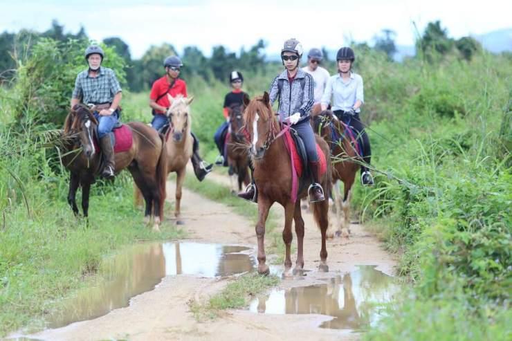 Morning Horseback Riding.jpg