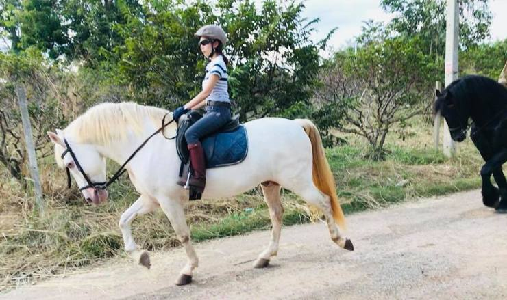Thailand-Khaoyai-horse-riding