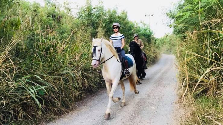 Thailand-horse-riding-sunset
