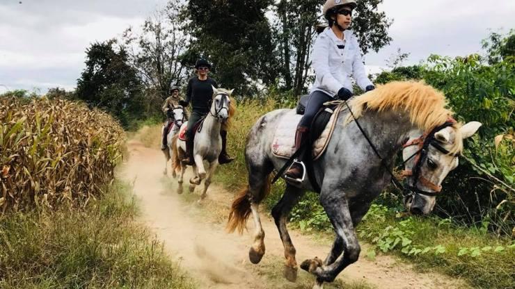 Thailand-horse-riding