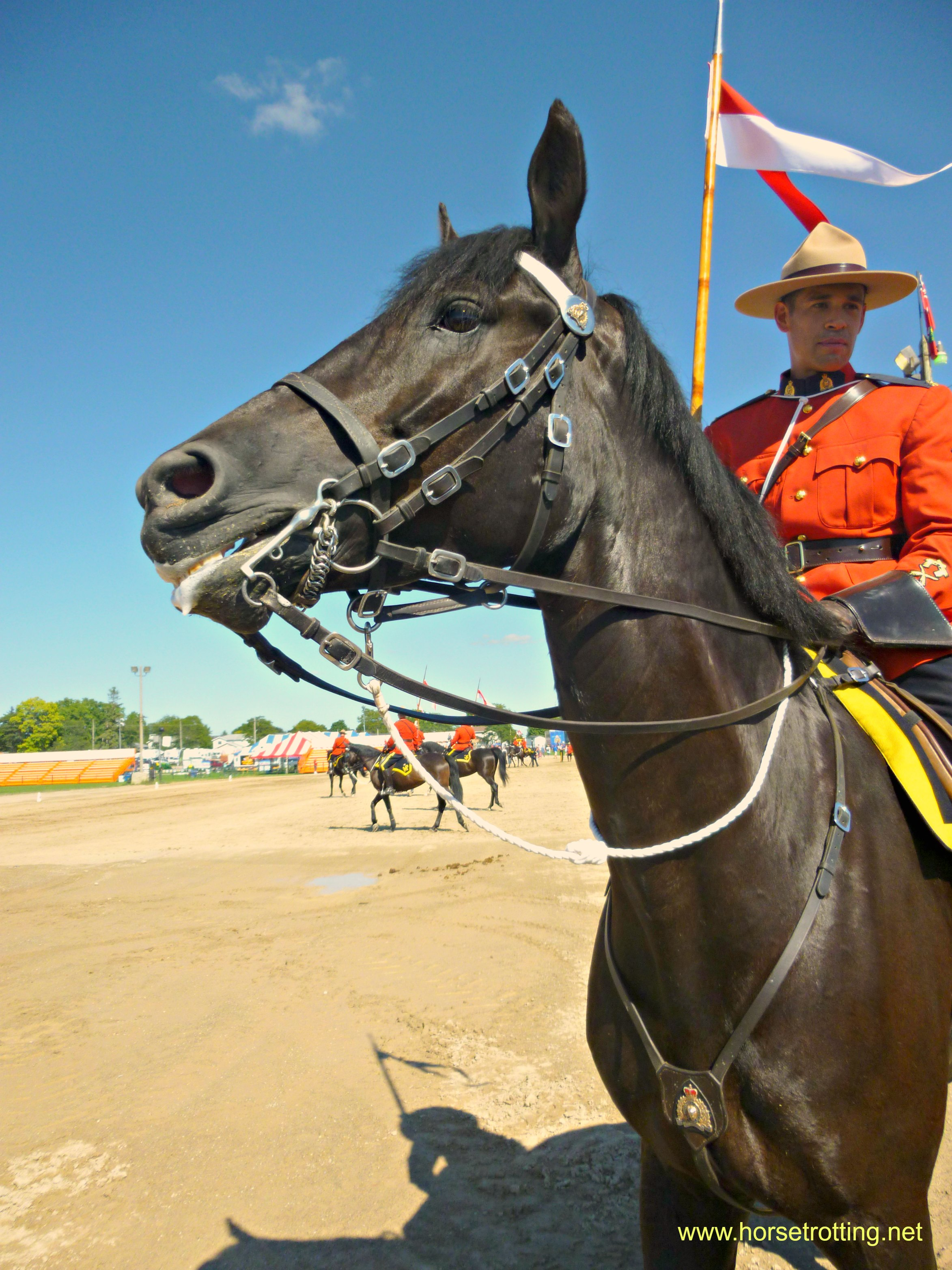 Southern Ontario Fall Fairs … with Horses. Gotta have horses.