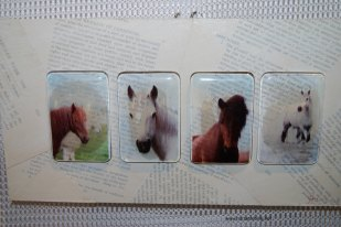 horse-glass