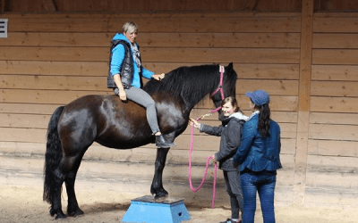 Switzerland Equine Assisted Learning Program